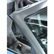 Audi R8 Spyder carbon wind screen cover