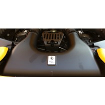Ferrari 458 Italia carbon air intake box